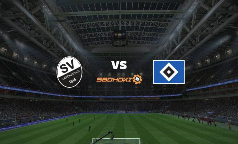 Live Streaming  SV Sandhausen vs Hamburg SV 16 April 2021 1