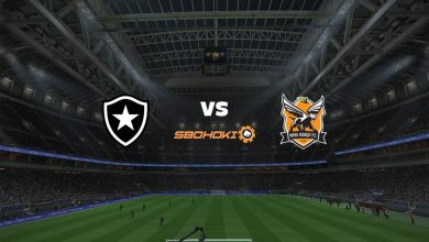 Photo of Live Streaming  Botafogo vs Nova Iguaçu 2 Mei 2021