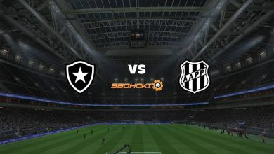 Photo of Live Streaming  Botafogo vs Ponte Preta 8 Agustus 2021